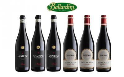 Amarone Allegrini + Ripasso Bertani / 6 pz