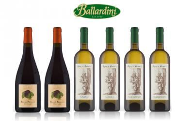 Pojer & Sandri Chardonnay + Nosiola + Pinot Nero Riserva / 6 pz