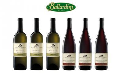 San Michele Appiano Sanct Valentin Pinot Grigio + Sanct Valentin Pinot Nero Riserva / 6 pz