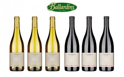 Tramin Pinot Nero + Sauvignon / 6 pz