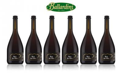 Bira da l'Ors Birra artigianale Birrificio Val Rendena / 6 pz