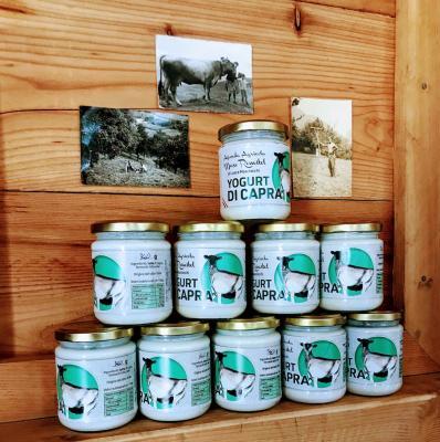 Yogurt di capra - piccolo